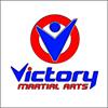 Victory Martial Arts | Summerset Festival 2018 Exhibitor